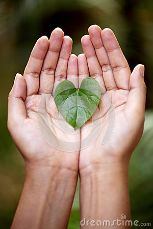 Free Hands Holding A Heart Shaped  Leaf Royalty Free Stock Photo - 34311945