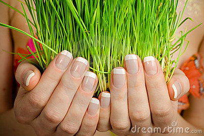 Hands Holding Green Grass
