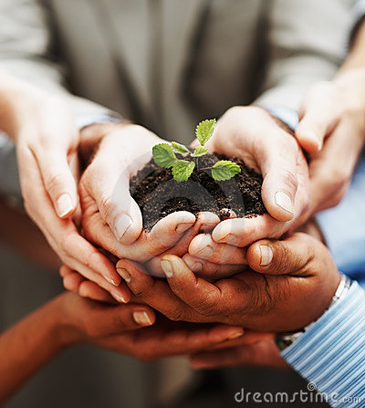 Hands holding green plant indicating teamwork