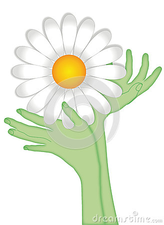 Free Hands In The Shape Of Flower Stock Image - 50654221