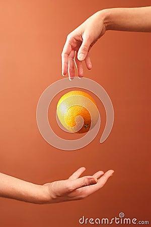 Hands and orange