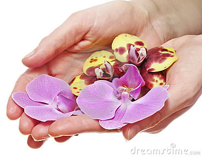 Hands with orchids