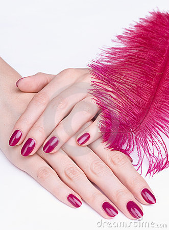 Hands with pink manicure and feather