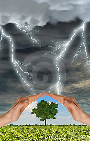 Hands preserve a green tree against thunder-storm