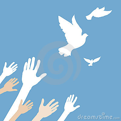 Hands releasing white dove.