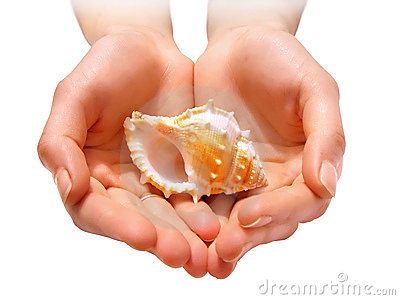 Hands with shell