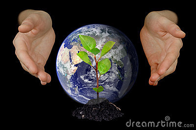 Hands shielding young tree and Earth