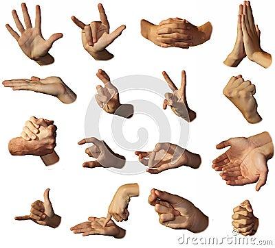 Hands show signs. Gesticulation.