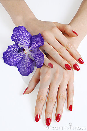 Free Hands With Manicure And Purple Orchid Royalty Free Stock Photos - 8507148