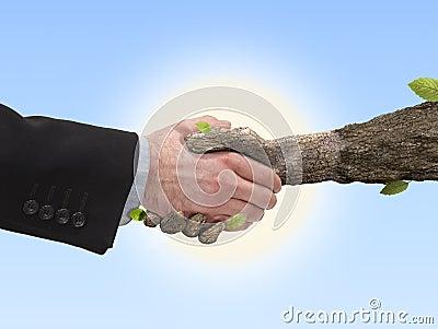 Handshake human hand and hand tree