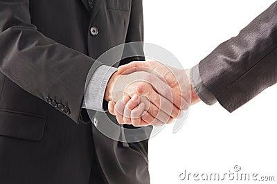 A handshake between two businesspersons