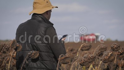 Handsome farmer with smartphone standing in field sunflower with combine harvester in background. Concept modern. Technology application in agricultural growing stock video footage