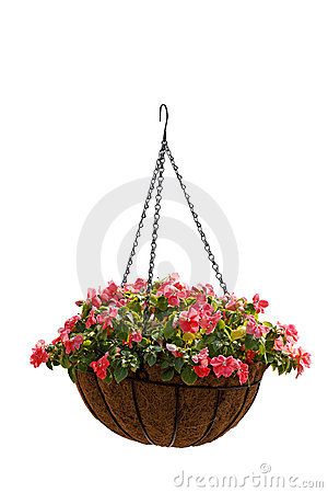 Hanging basket of beautiful flowers