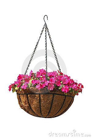 Free Hanging Basket Of Beautiful Flowers Stock Photography - 21360082