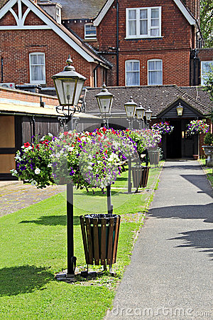 Hanging baskets and lamps