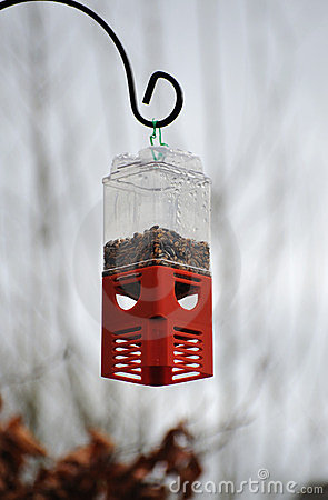 Hanging Bird Feeder With Peanuts