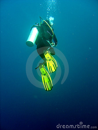 Free Hanging Diver Royalty Free Stock Photography - 653797