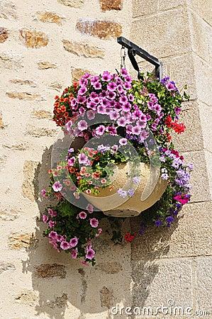 Free Hanging Flower Pot Stock Image - 20102651