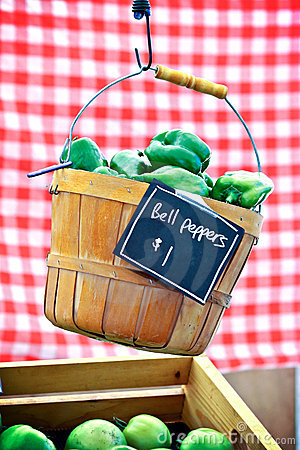 Hanging Pepper Basket