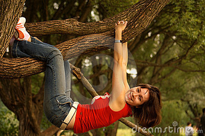 Hanging on tree