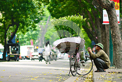 HANOI -24th April, 2013, Unidentified flower vendor in a street in Hanoi Vietnam. This is a specific tradition in Hanoi Editorial Stock Photo
