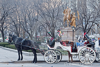 Hansom Cab in Central Park New York City Editorial Stock Photo