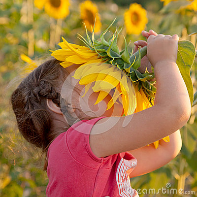Happy baby smelling sunflower