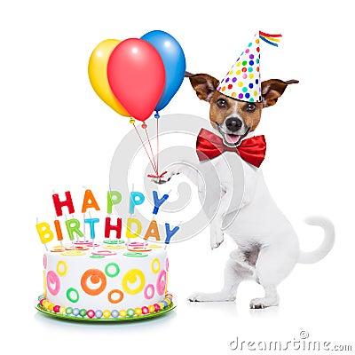Dog Birthday Cake Washington Dc