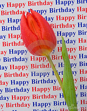 Happy birthday: a special message with a tulip.
