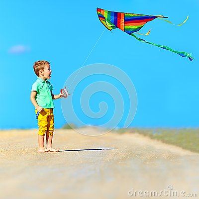 Free Happy Boy Playing With Kite On Summer Field Royalty Free Stock Photography - 41882127