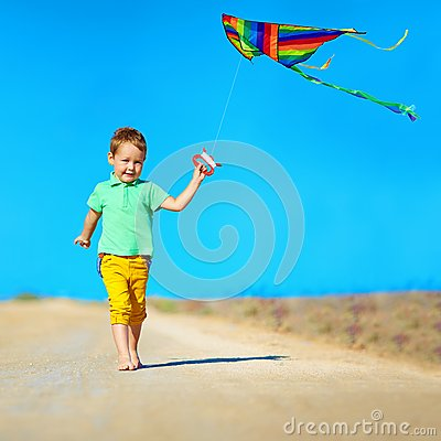 Free Happy Boy Playing With Kite On Summer Field Royalty Free Stock Photos - 42117988