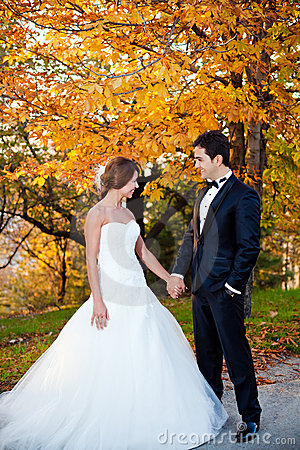 Free Happy Bride And Groom Stock Image - 17290191
