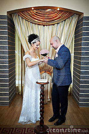 Free Happy Bride And Groom On Solemn Registration Stock Photography - 17802842