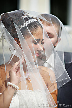 Happy bride and groom, wedding veil draped