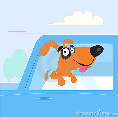 Happy brown and black dog travelling in blue car
