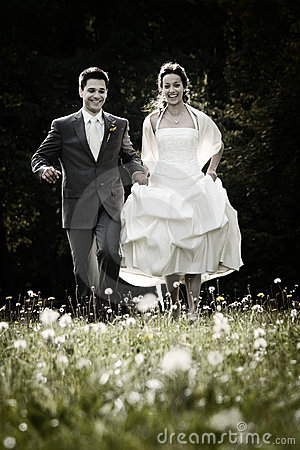Free Happy Couple On Wedding Day Stock Photo - 11487930