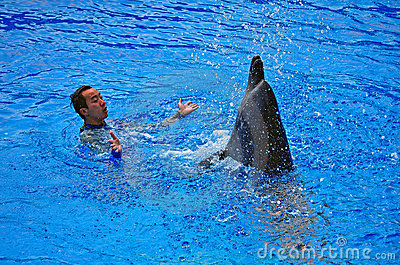 Happy dolphin and trainer Editorial Stock Image
