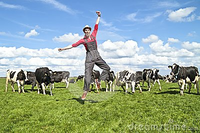 happy dutch farmer with his cows royalty free stock photos Cheese Clip Art farmer wife clip art black and white