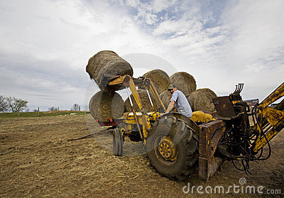 Happy Farmer on Tractor with Round Hay Bales