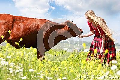 Happy girl feeding cow