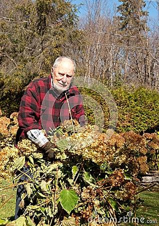 Happy grandfather gardener