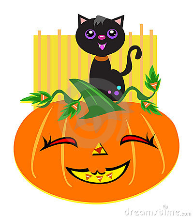 Free Happy Halloween Cat And Pumpkin Stock Photo - 20304990