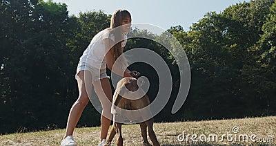 Happy, junges Weibchen, das fröhlich Leine mit Hund auf dem Rasen spielt Liebe und Freundschaft mit Haustieren stock footage