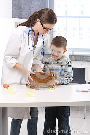 Happy kid at vet with rabbit