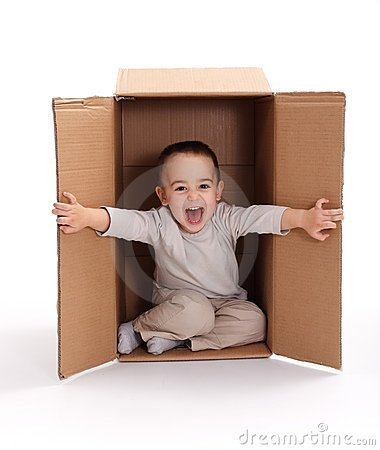 Happy little boy in cardboard box