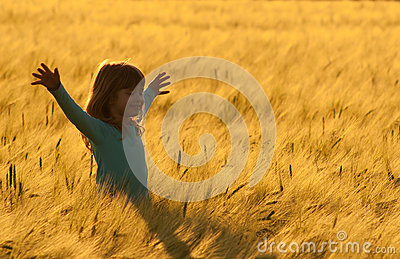 Happy little girl walking in the field of wheat