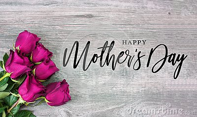 Happy Mother`s Day Calligraphy with Pink Roses Stock Photo