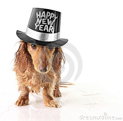 Free Happy New Year Stock Photos - 11833773