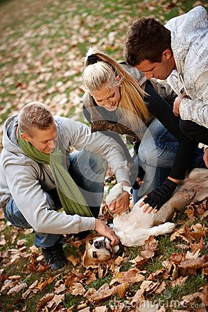 Happy people stroking dog outdoors