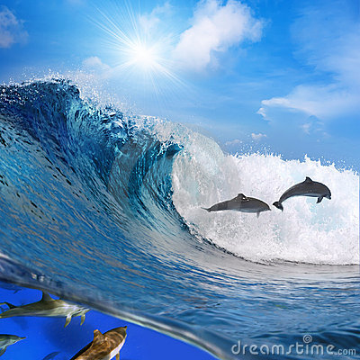 Happy playful dolphins jumping on breaking wave